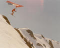 """Launching the Whistler Museum's new exhibit """"The Evolution of Skiing"""""""