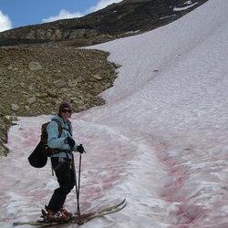 Jaclyn skis august