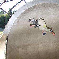 Adam Longnecker upside down